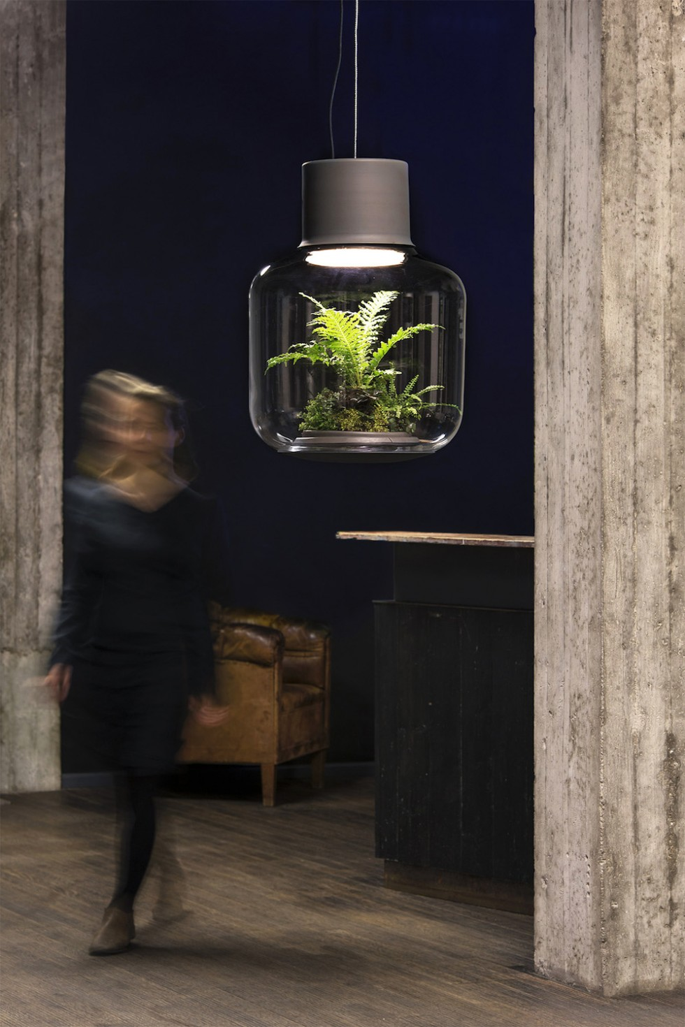 Find Terrarium Lamps by Nui Studio3 Nui Studio Find Terrarium Lamps by Nui Studio Find Terrarium Lamps by Nui Studio3 e1460363424326